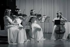 Elite Quartet