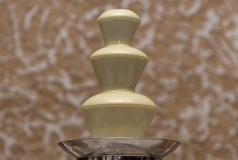 Шоколадный фонтан, шампанское